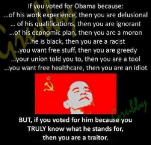 If-You-Voted-For-Obama