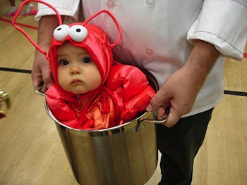 ... babies in costumes ...  sc 1 st  I Am Begging My Mother Not To Read This Blog & I Donu0027t Give A Shit About Your Halloween Costume and Other ...