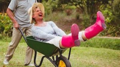 Hillary-in-a-Wheelbarrow-900-300x169